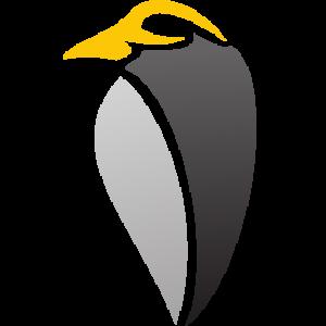 Linux User Group Новосибирск